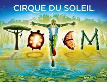 Spectacle Totem du Cirque du Soleil
